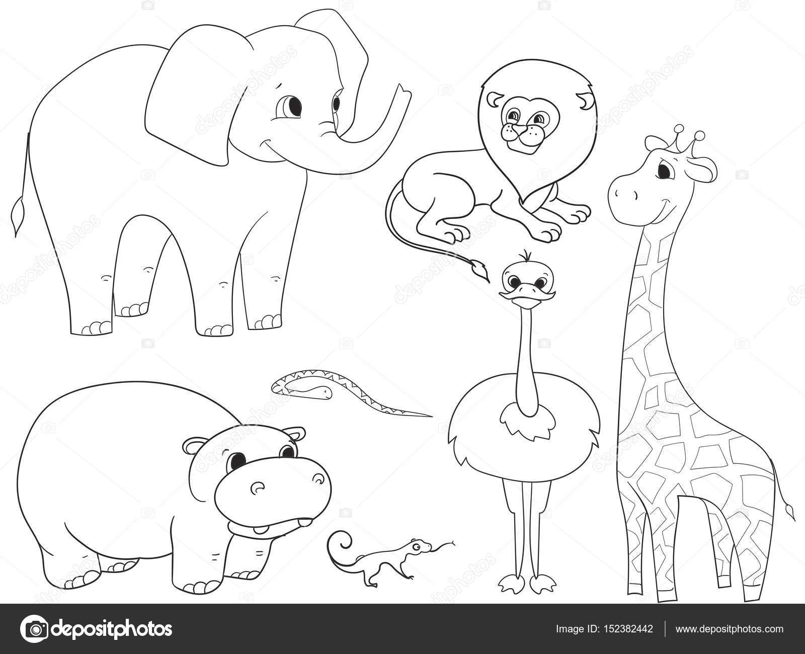Imágenes: animales de africa para colorear | Animales de África