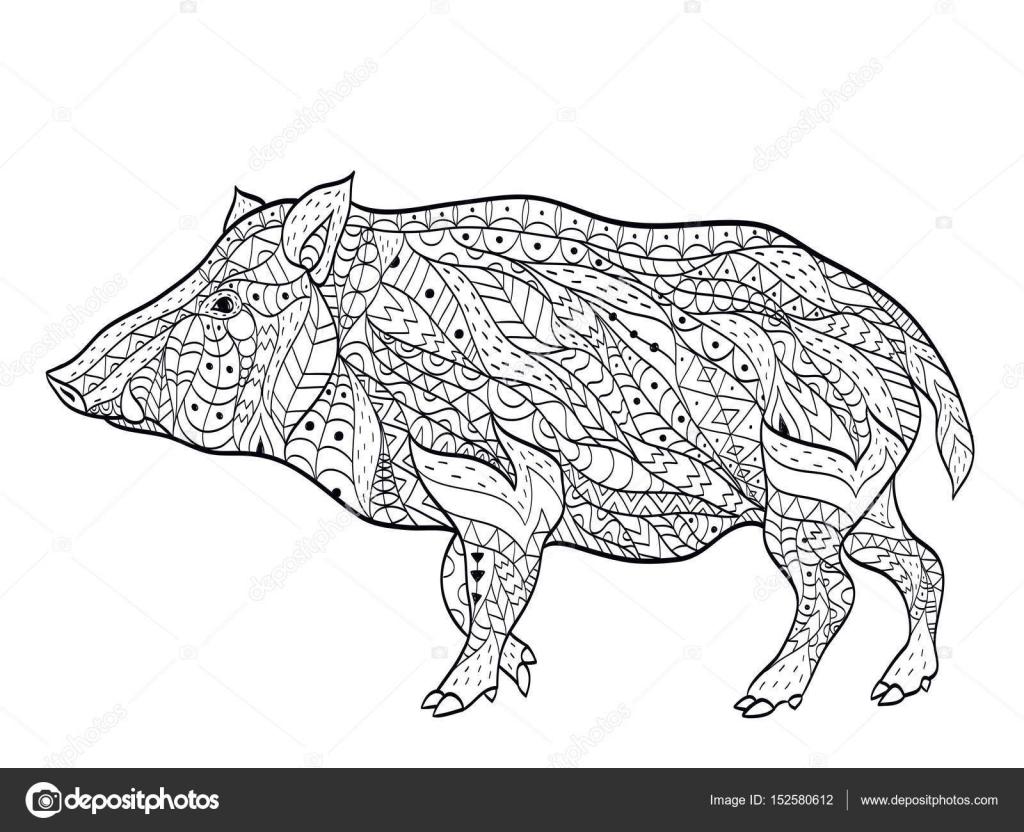 Kleurplaten Dieren In Het Wild.Wild Zwijn Vector Kleurplaten Voor Volwassenen Stockvector