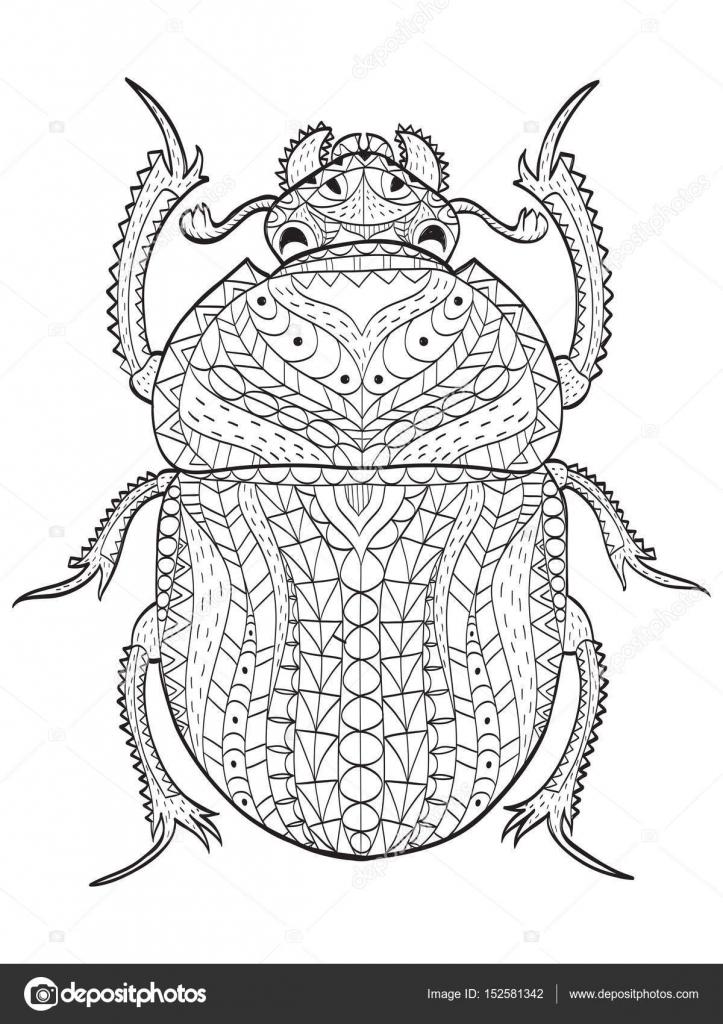 Vector de color de escarabajo escarabajo egipcio para adultos ...