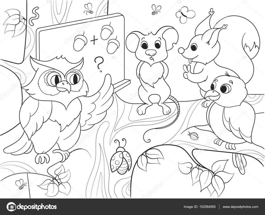 Lección De La Escuela De Un Búho En El Bosque Libro Para