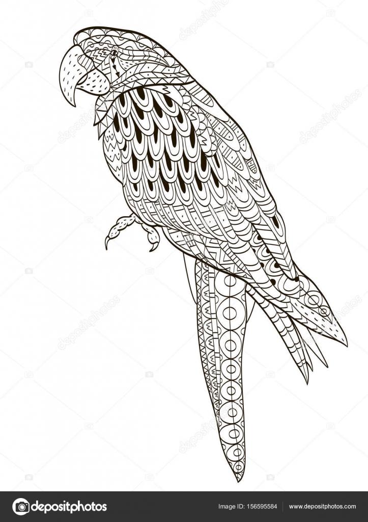 Loro. Aves tropicales. Ilustración de vector. Libro para colorear ...