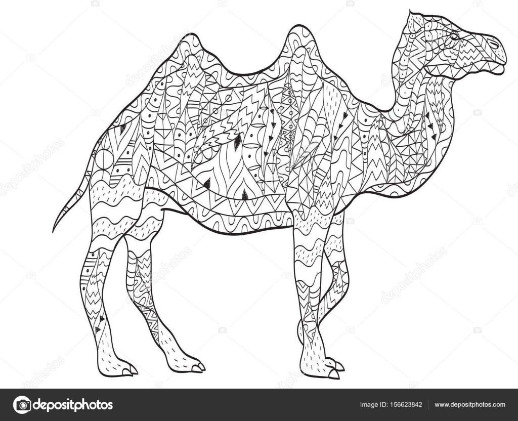 colorear camello animal para adultos — Archivo Imágenes Vectoriales ...
