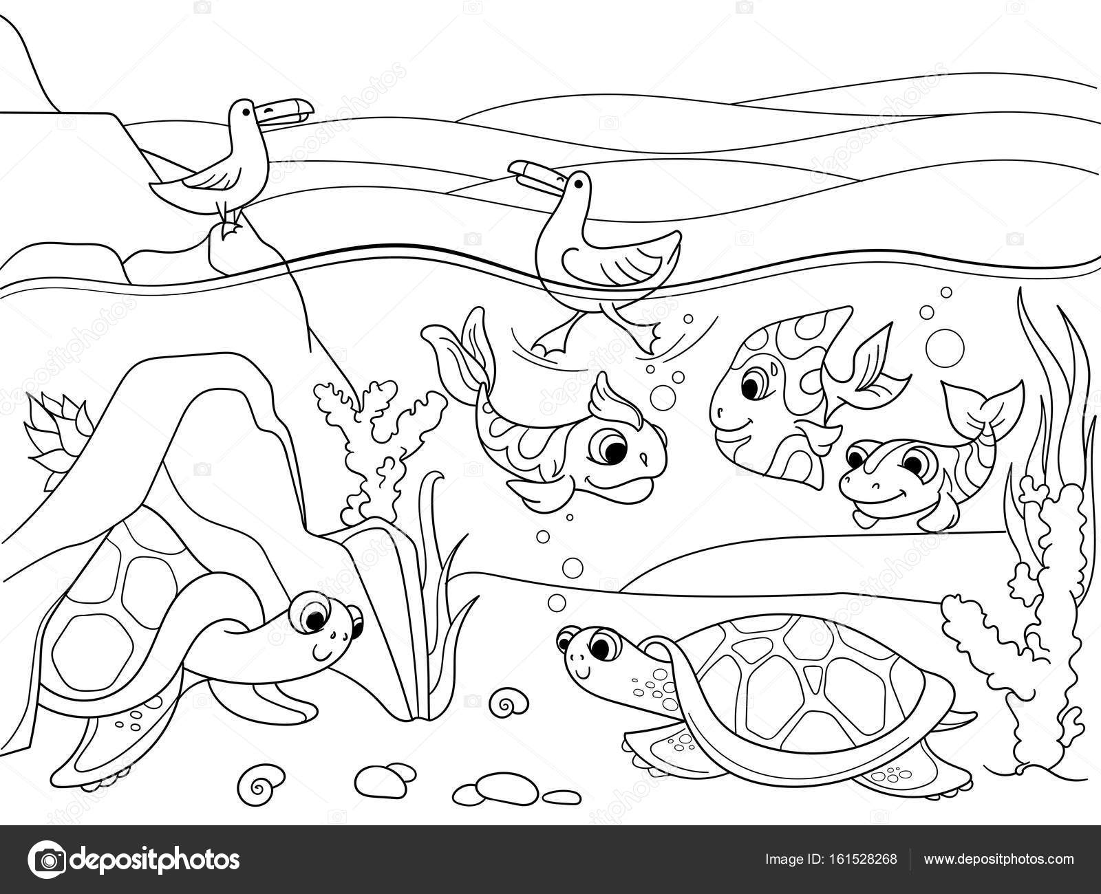 Coloring Pages Of Wetland Animals : Wetland animals coloring page sketch