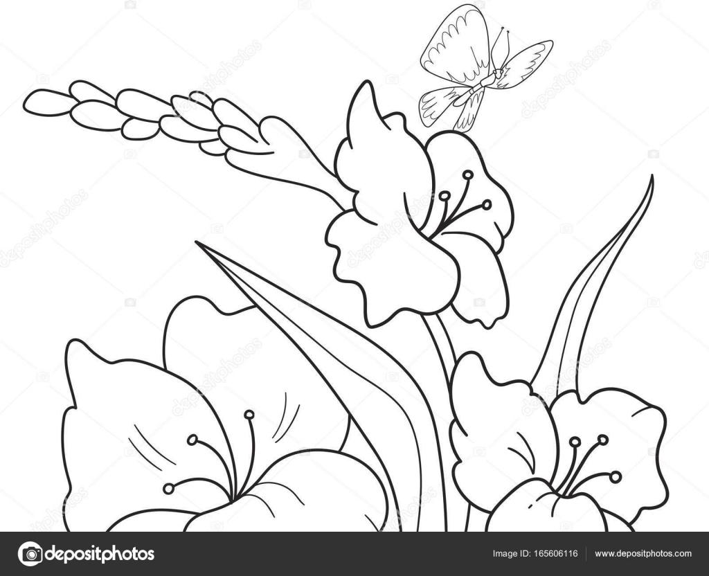 Imágenes Flores Para Dibujar Animadas Glade De Dibujos Animados