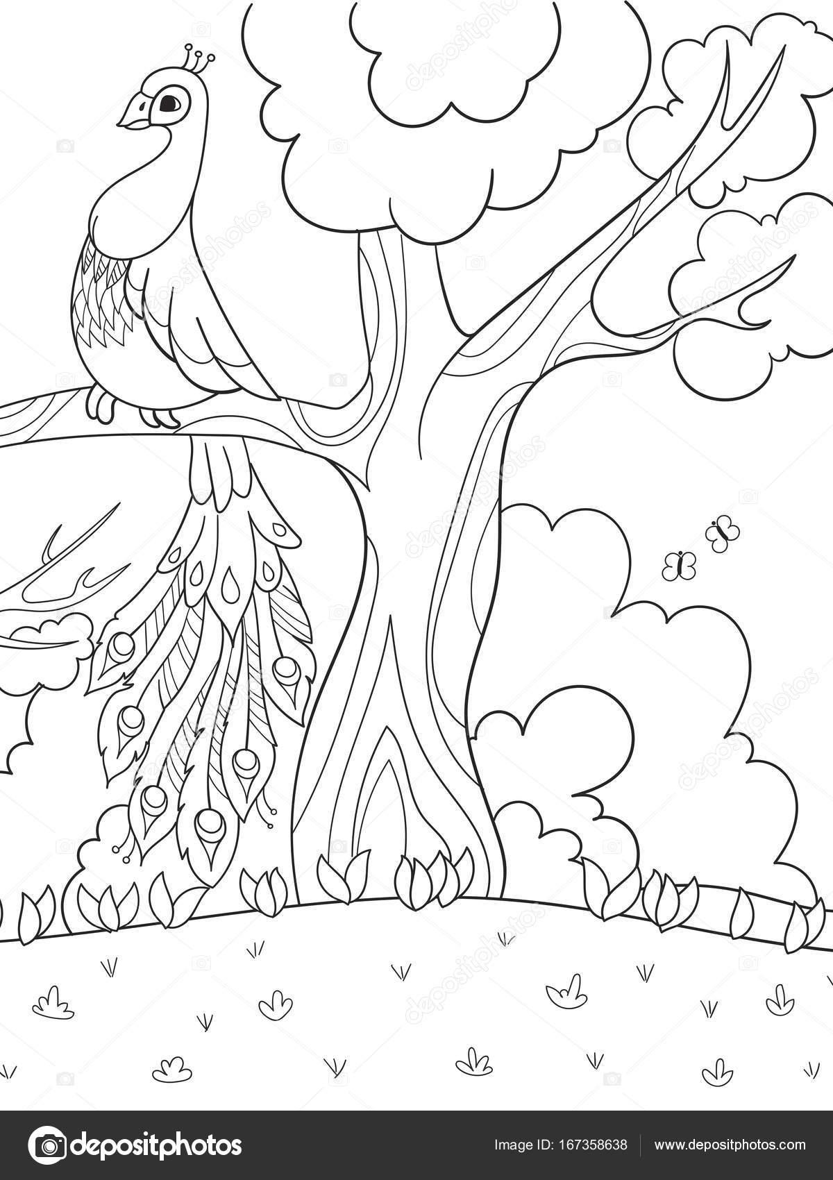 Dibujos: pavos para niños | Para colorear dibujos animados para ...