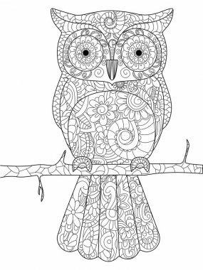 Owl on a branch Coloring book raster for adults