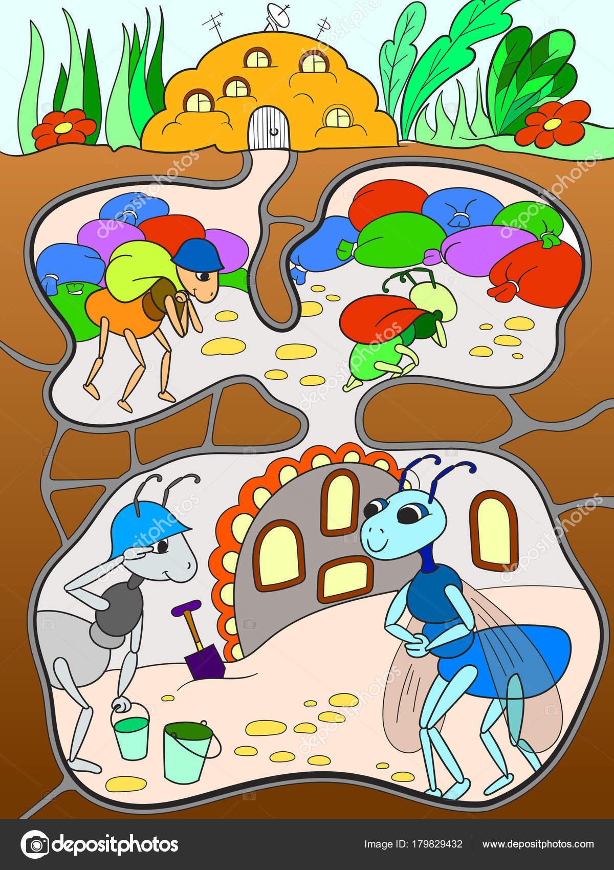 Iç Ve Karıncalar Bir Karınca Yuvası Renkli çocuklar Için Aile Hayatı