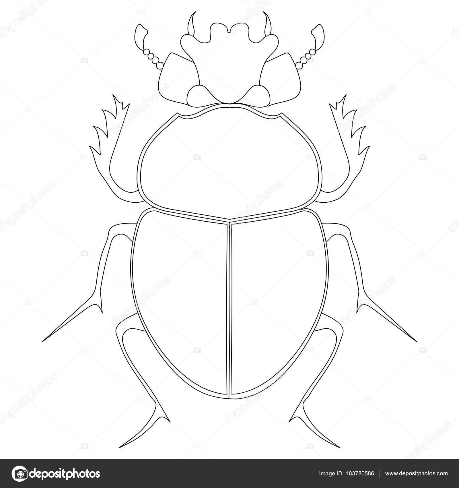 Vector para colorear. Escarabajo de escarabajo egipcio — Vector de ...