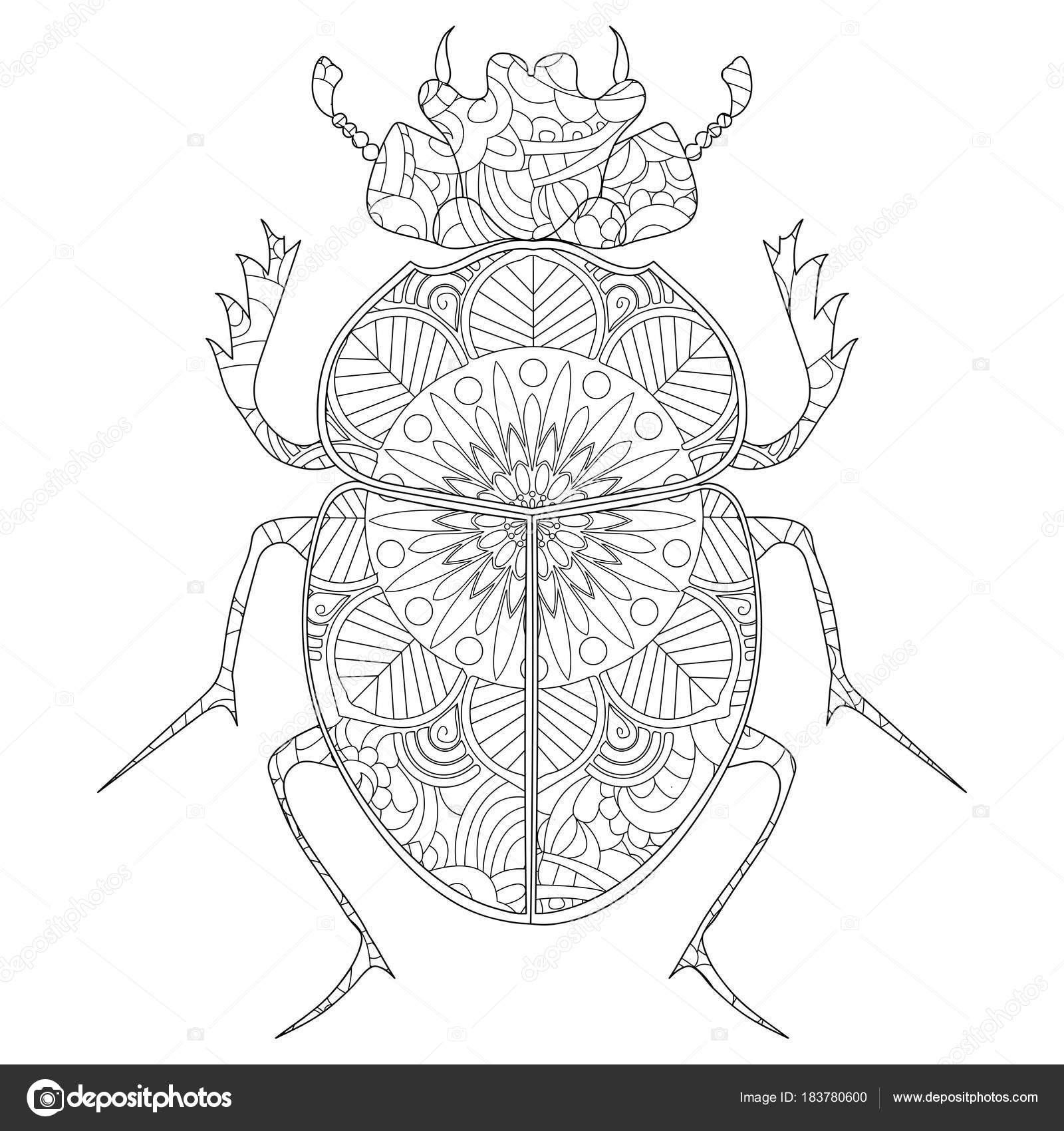 Anti-stress para colorear libro vector. Escarabajo de escarabajo ...