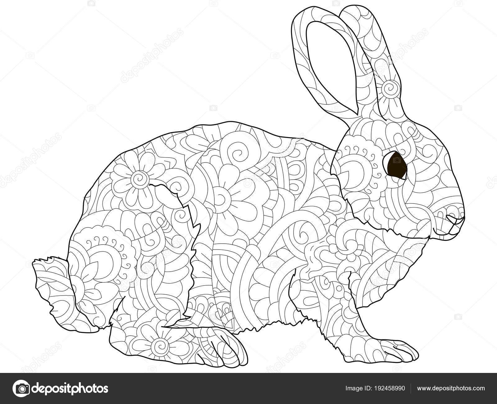 Adultos Antiestrés Para Colorear, Conejo, Liebre, Patrón