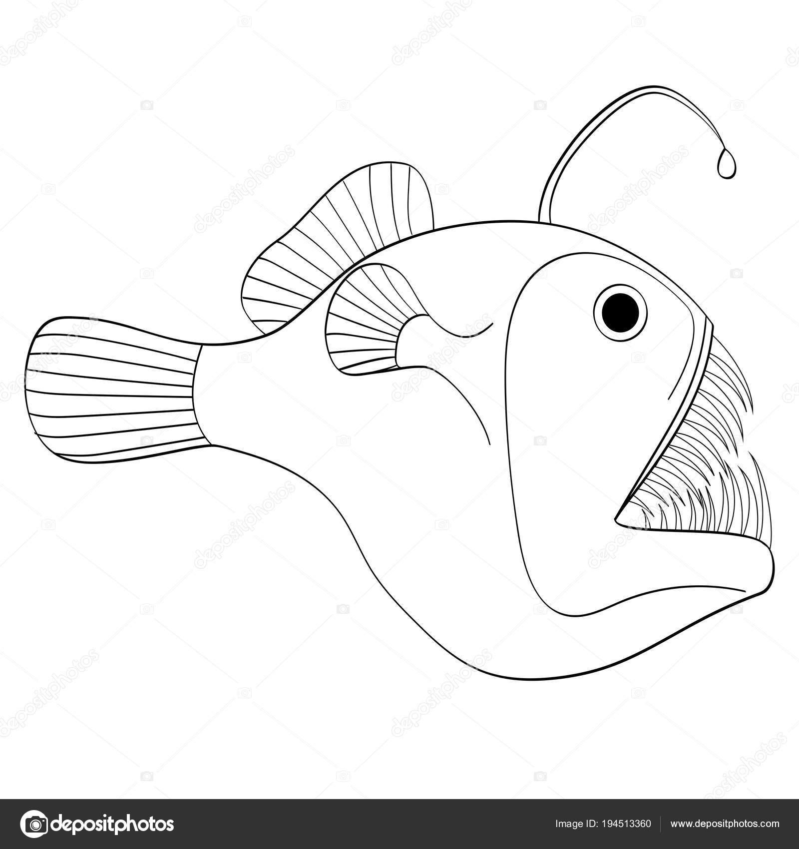 Objeto aislado sobre fondo blanco de alta mar, pez de agua Lophius ...