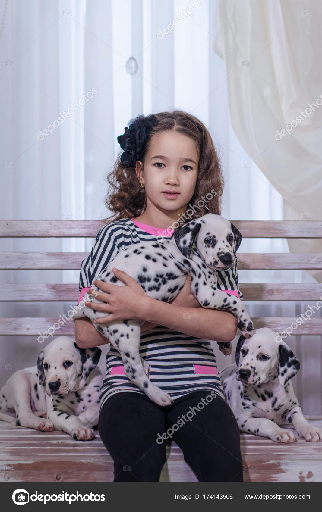 c6b0e2cc4a3 Χαριτωμένο νεαρή κοπέλα παίζει με τα σκυλάκια της Δαλματίας. Σε εσωτερικούς  χώρους. Στούντιο πορτρέτου