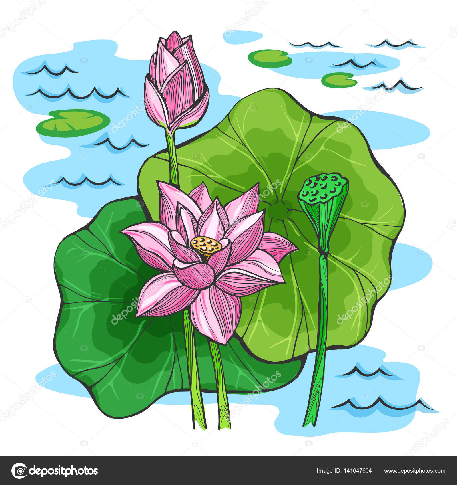 Vector colored sketch lotus flowers stock vector roma79 0979 vector colored sketch lotus flowers stock vector mightylinksfo