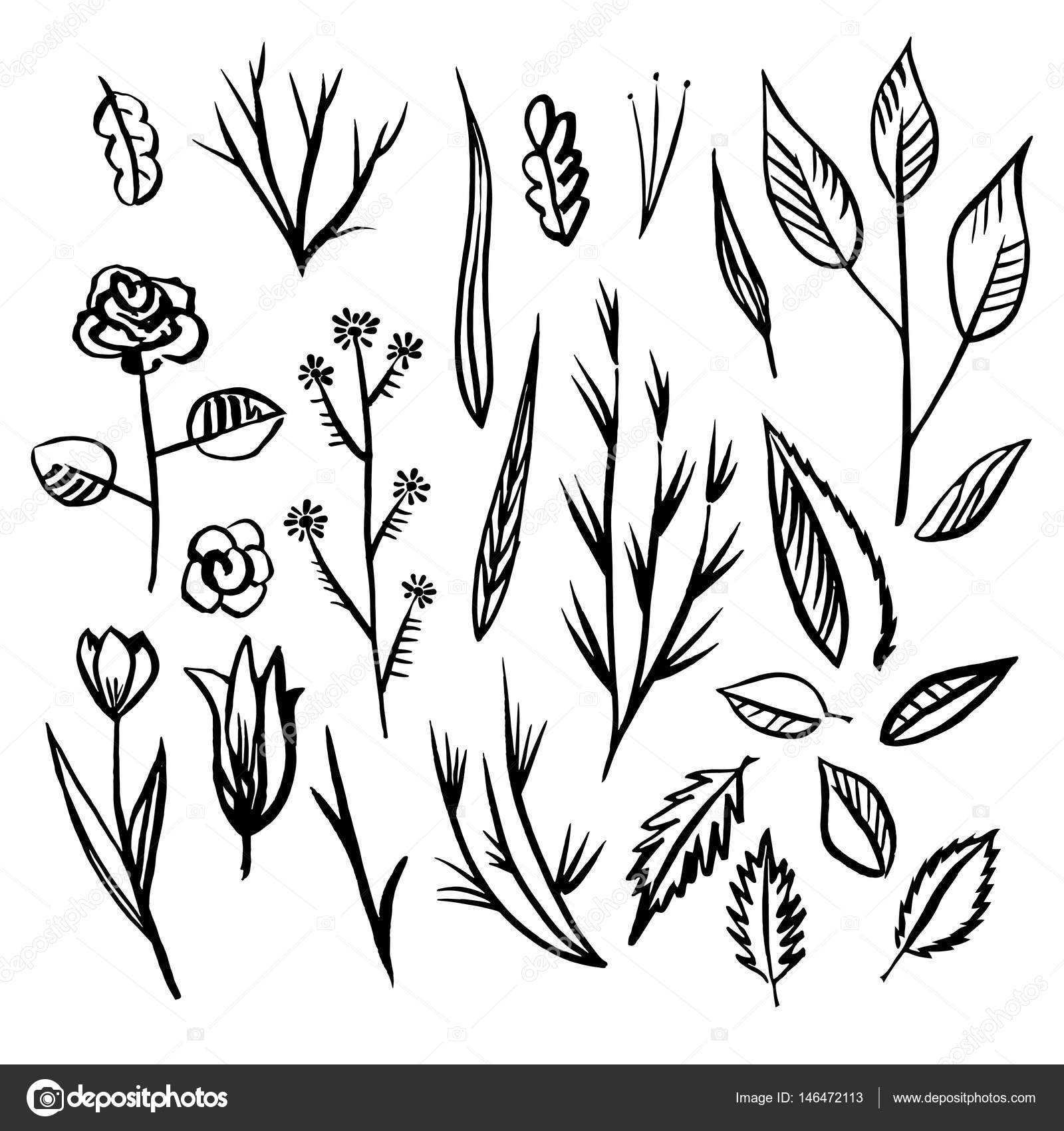 Floral designs detail sketch — Stock Vector © roma79 0979 mail