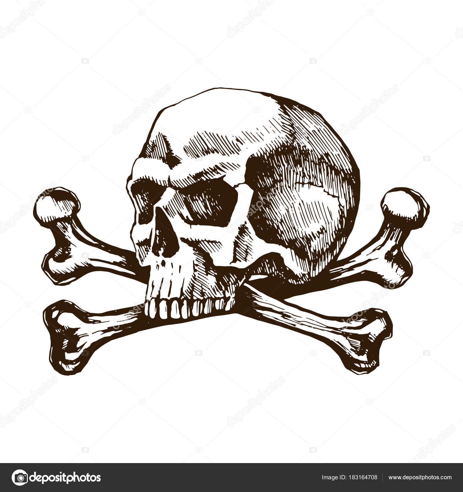 Skull And Crossbones Stock Vector Roma79 0979mail 183164708