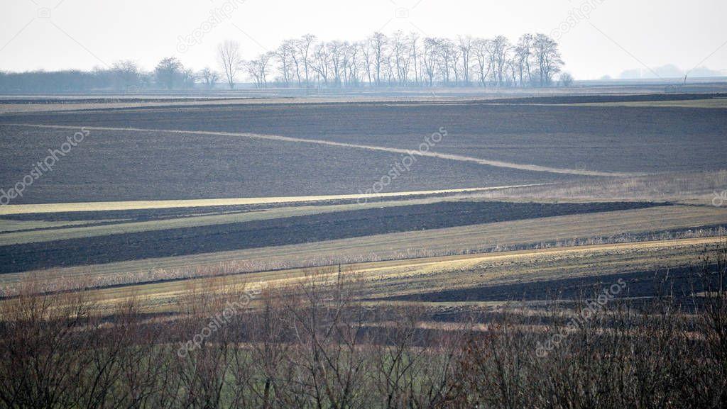Rural spring landscape_2