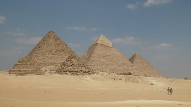pyramids of giza and two camels at cairo, egypt