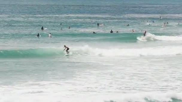 60p széles felvétel a szörfösökről Queensland arany partjainál.
