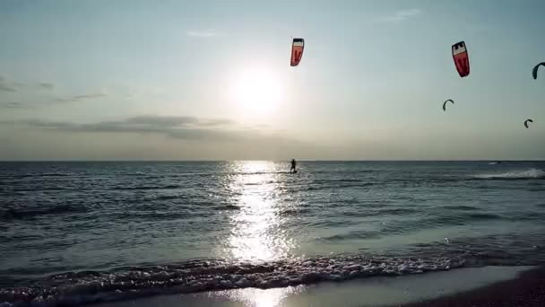 Kitesurfing. Eleven kitesurfers going surfing on the surfboards on waves at sunset. HD