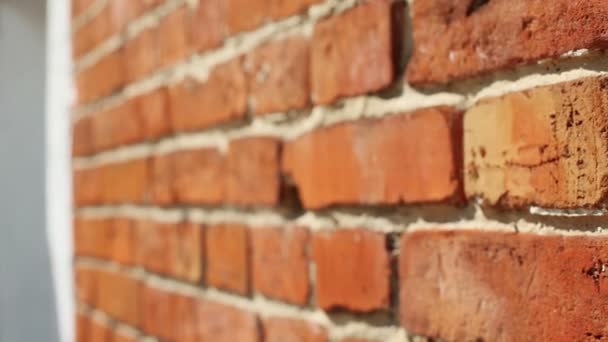 Exteriér obytných domu. Panoramatický pohled ze zdi z červených cihel. HD