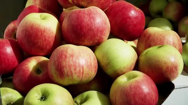 Still life. Složení z červená šťavnatá zralá jablka. Detailní záběr. HD