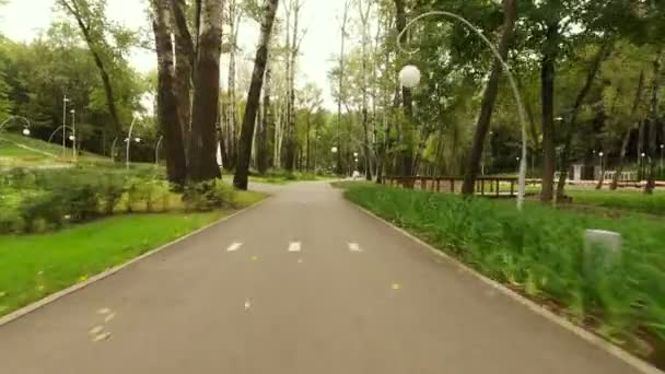 Dynamické natáčení. Fotoaparát plující podél dlážděných chodníků v podzimním parku. 4k