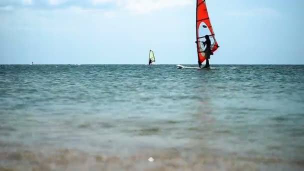 Wind-surfing. Dark silhouettes of surfers riding on sailboards on the sea waves at sunny day. HD
