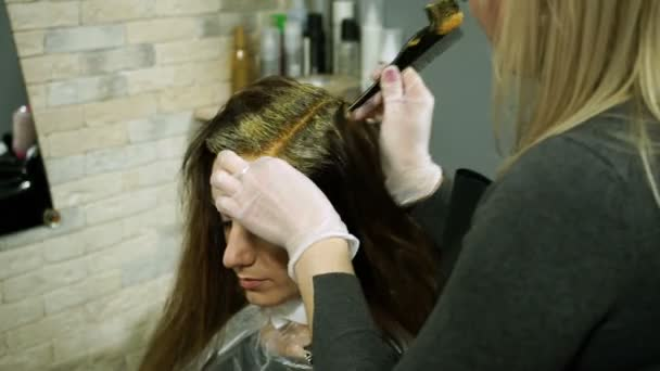 Female blonde barber making hair colouring of young woman at hairdressers. HD