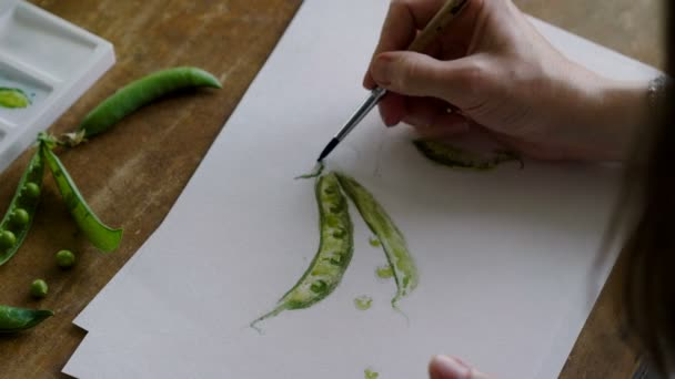 Close-up shot of unknown female artists hands painting a still life of green pea pod in watercolors. 4K