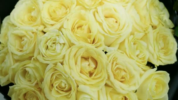 Close-up shot of a large bouquet of bright fresh yellow roses in a flower shop. 4K