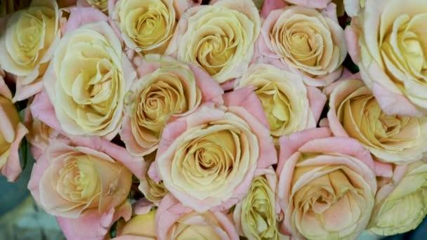 Detailní záběr velkou kytici jasných čerstvých růžových růží v květinářství. 4k