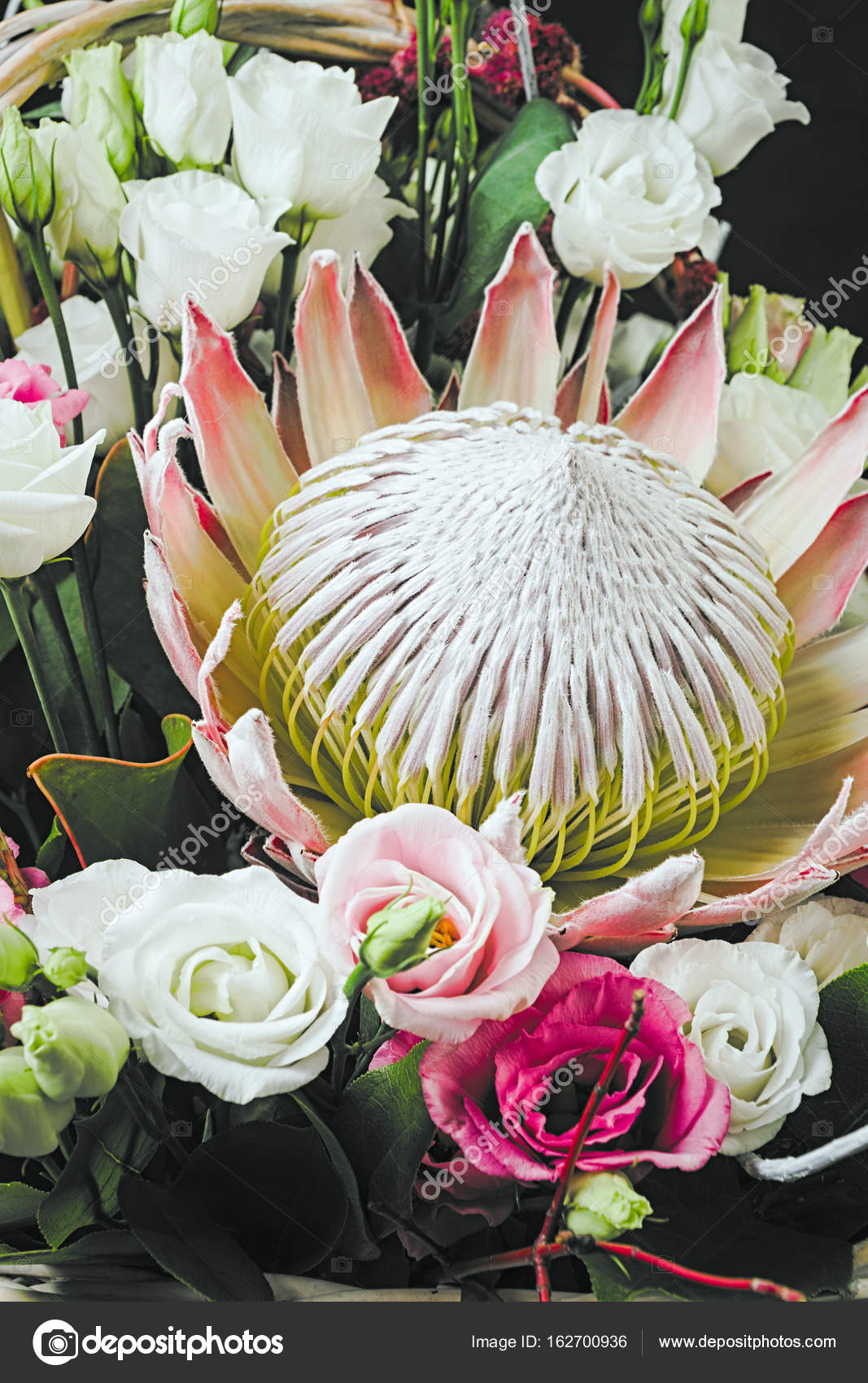 Protea flower in bouquet — Stock Photo © scube-7r@mail.ru #162700936
