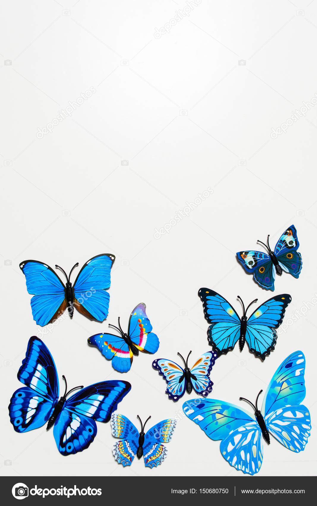 Farfalla Blu Su Sfondo Bianco Foto Stock Karlevanagmailcom