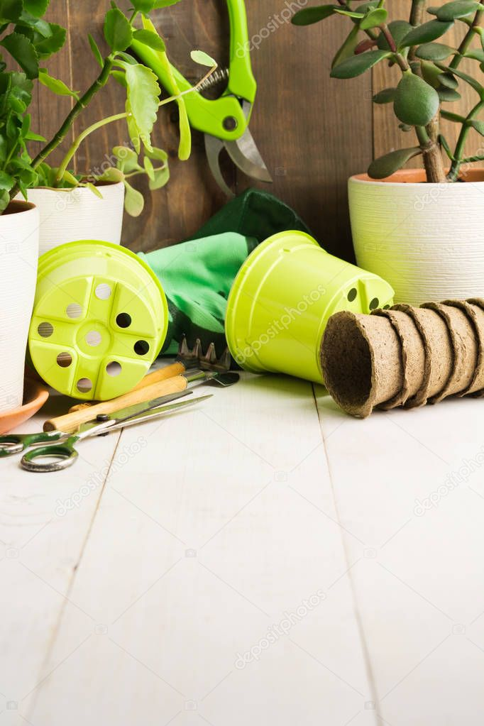Tools and pots for home garden with copy space
