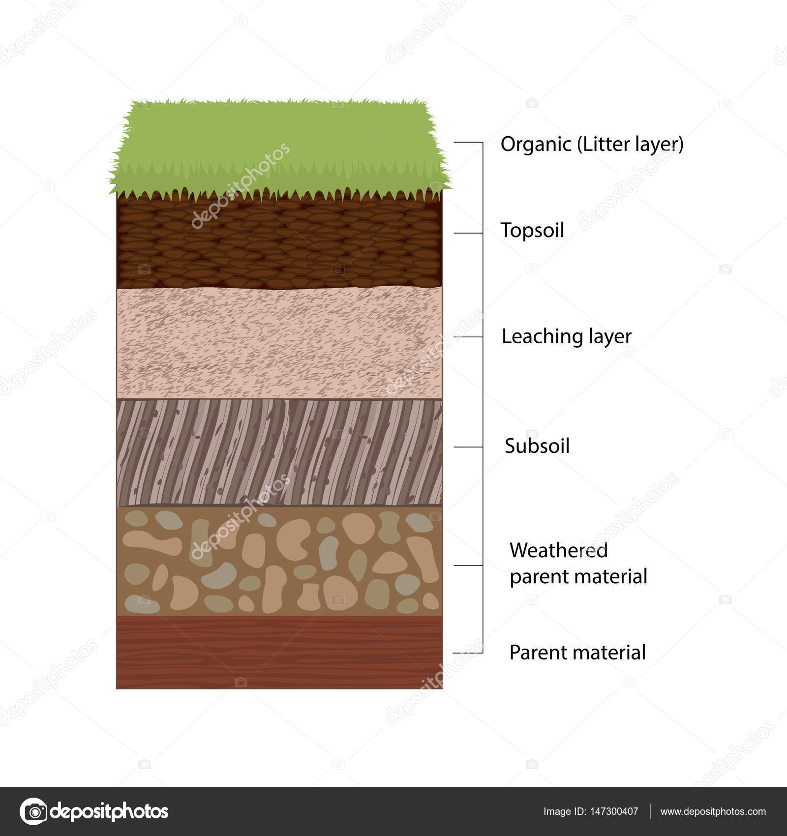 Soil horizons and layers stock vector fancytapisail soil horizons and layers stock vector pooptronica Images