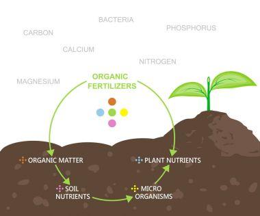 Diagram of Nutrients in Organic Fertilizers