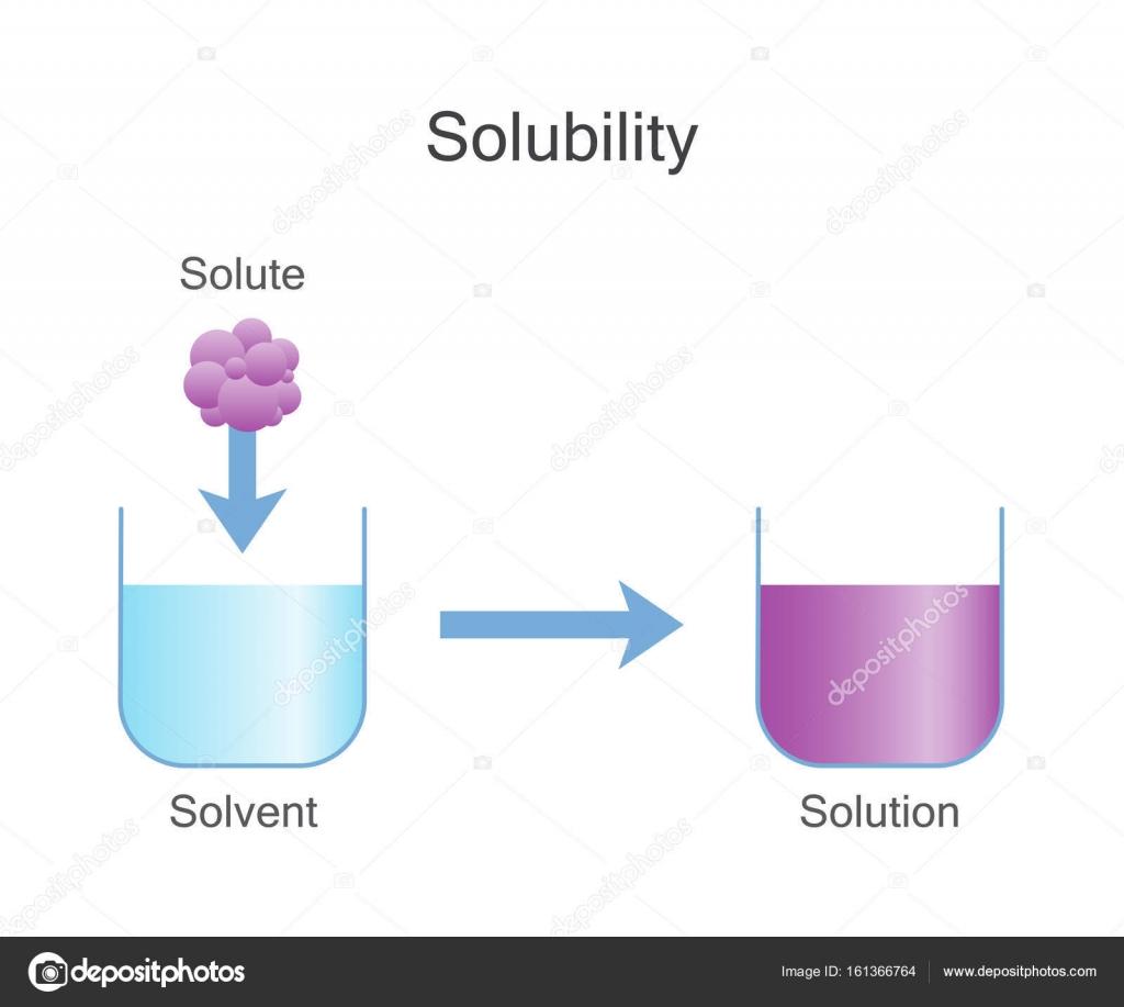 Disolución De Sólidos Solubilidad Química Archivo