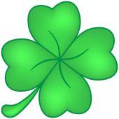 Čtyři-Leaf Clover zelená izolovaných na bílém pozadí
