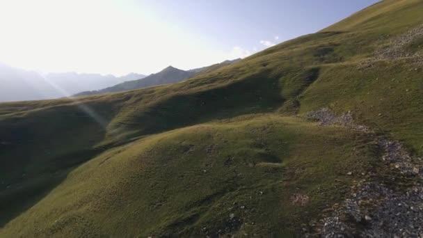 Lysé hoře v létě Slunečné západ slunce nebo svítání, za soumraku nebo svítání odhalují 4 k letecké dron dopředného letu široké stanovením shot