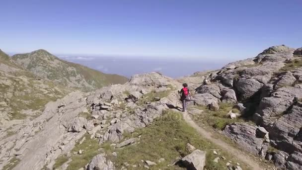 aerial above view of young woman hiking or nordic walking in trail path on Italy Alps mountains in summer sunny day. 4k drone forward flight wide shot