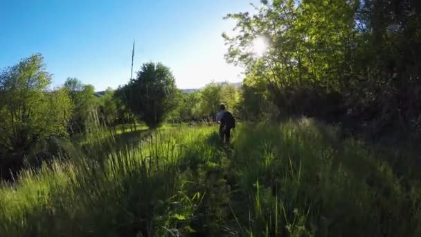 Následující batohem tramp muž v divokých lesích. pěší turistiku či Treking dobrodružství v lese venku zelené přírody s filtrování sluneční světlo v slunné letní day.4k video