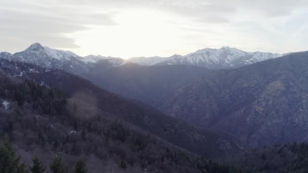 posun vpřed přes holé pádu lese lesa a zasněžené hory v podzimní nebo zimní západ slunce. Venkovní šťastnou povahu stvol skalnaté hory s snow wild letecké establisher.4k hukot flight založení shot