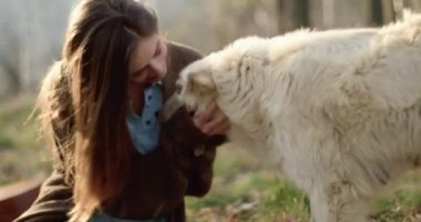 Smiling happy woman gently stroking white dog around fire place.real friends people outdoor camping tent vacation in autumn trip.Fall sunny day in nature, animal friendship. 4k video