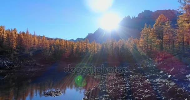 előre antenna feletti alpesi völgy-tó és a narancs vörösfenyő-erdő erdők napsütéses őszi. Alpok kültéri színes természet tájkép hegyek vad establisher.4k drone repülés létrehozó lövés esik