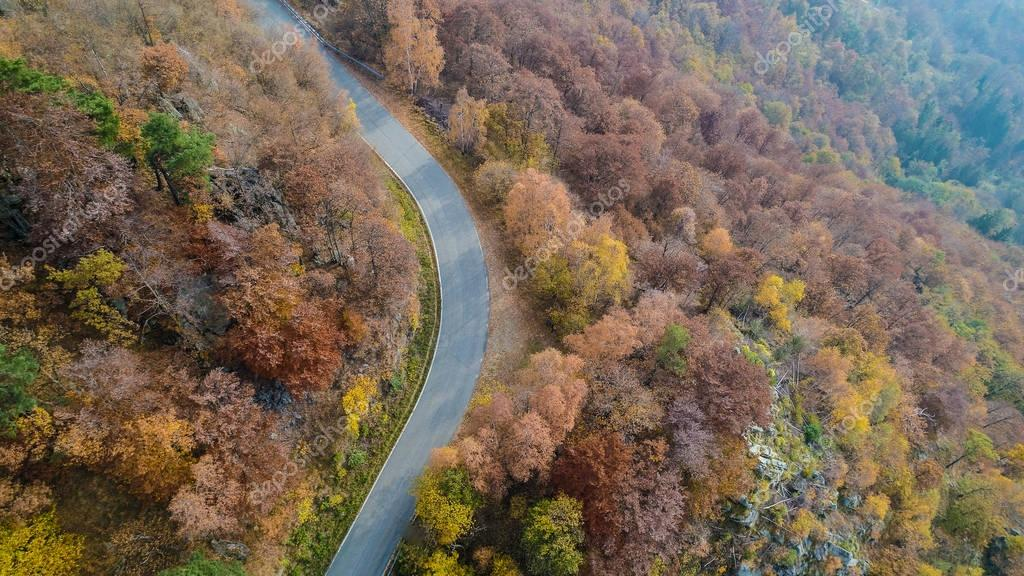 Overhead aerial top view over curve road bend in colorful countryside autumn forest.Fall orange,green,yellow,red tree woods and sun.Mountain turn street path background.Straight-down above perspective