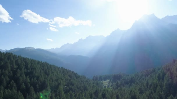 pohybující se zpět k borové lesy lesů a horských údolí s sluneční erupce v letním dni. Evropa Itálie Alpy zelené přírody stvol hory divoké letecké establisher.4k hukot let založení shot