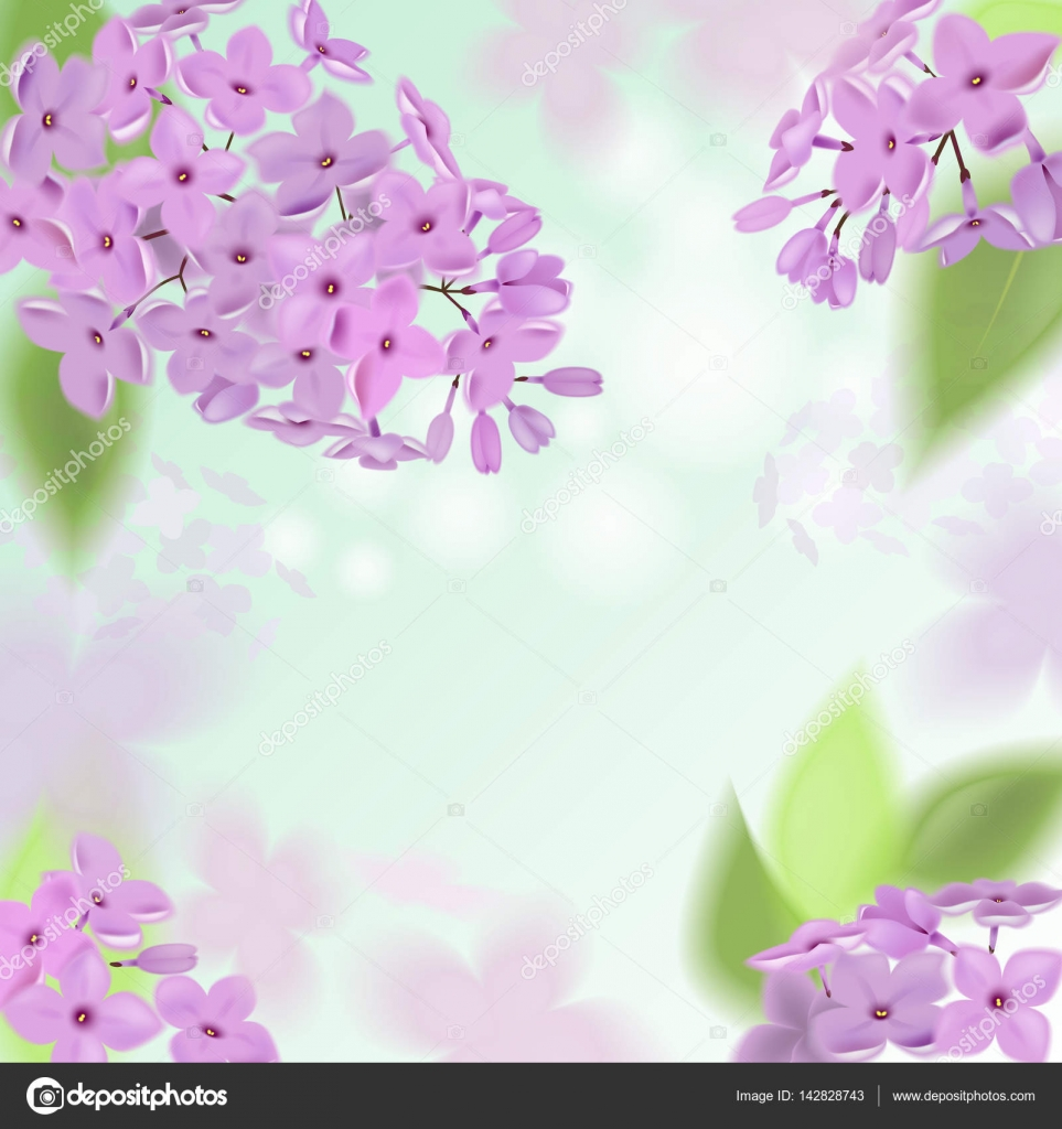 Vector Web Banners With Purple Pink Blue And White Lilac Flowers