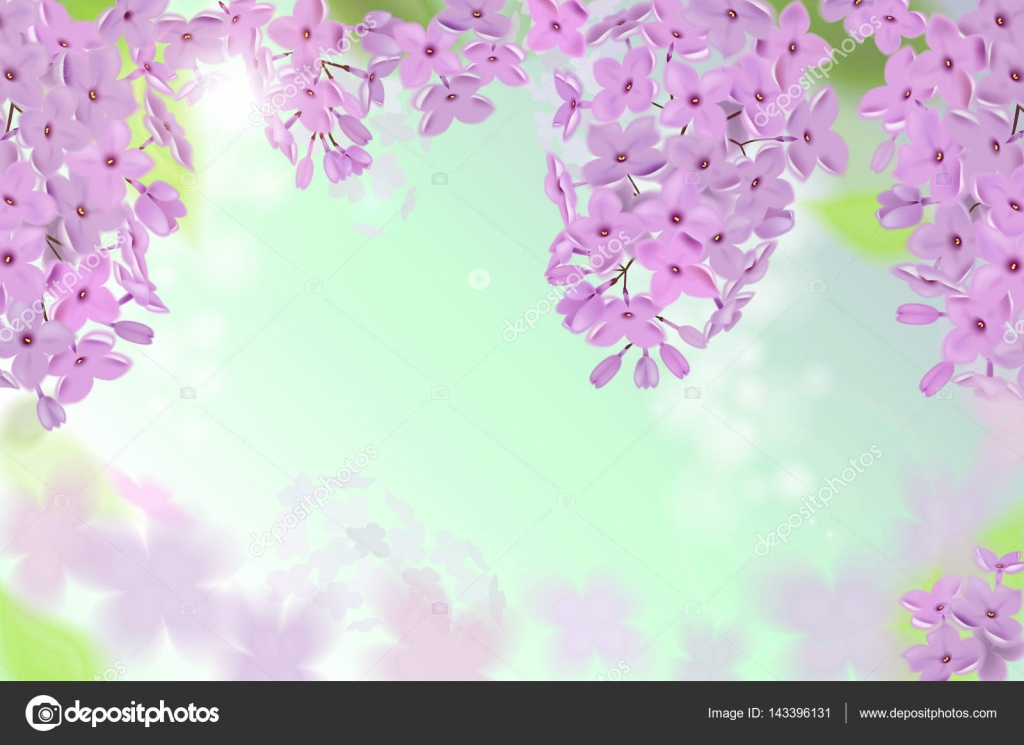 Vektor-Web-Banner mit lila, rosa, blau und weiß lila Blumen ...