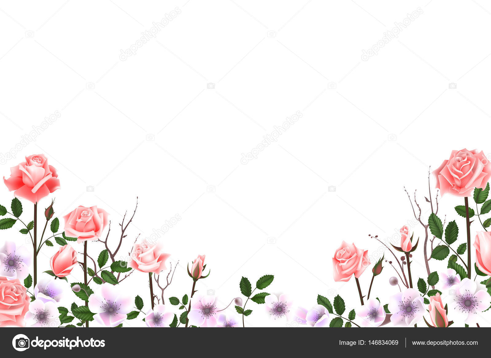Felicitaciones De Cumpleaños Con Flores: Fotos: Flores Para Tarjetas De Cumpleaños