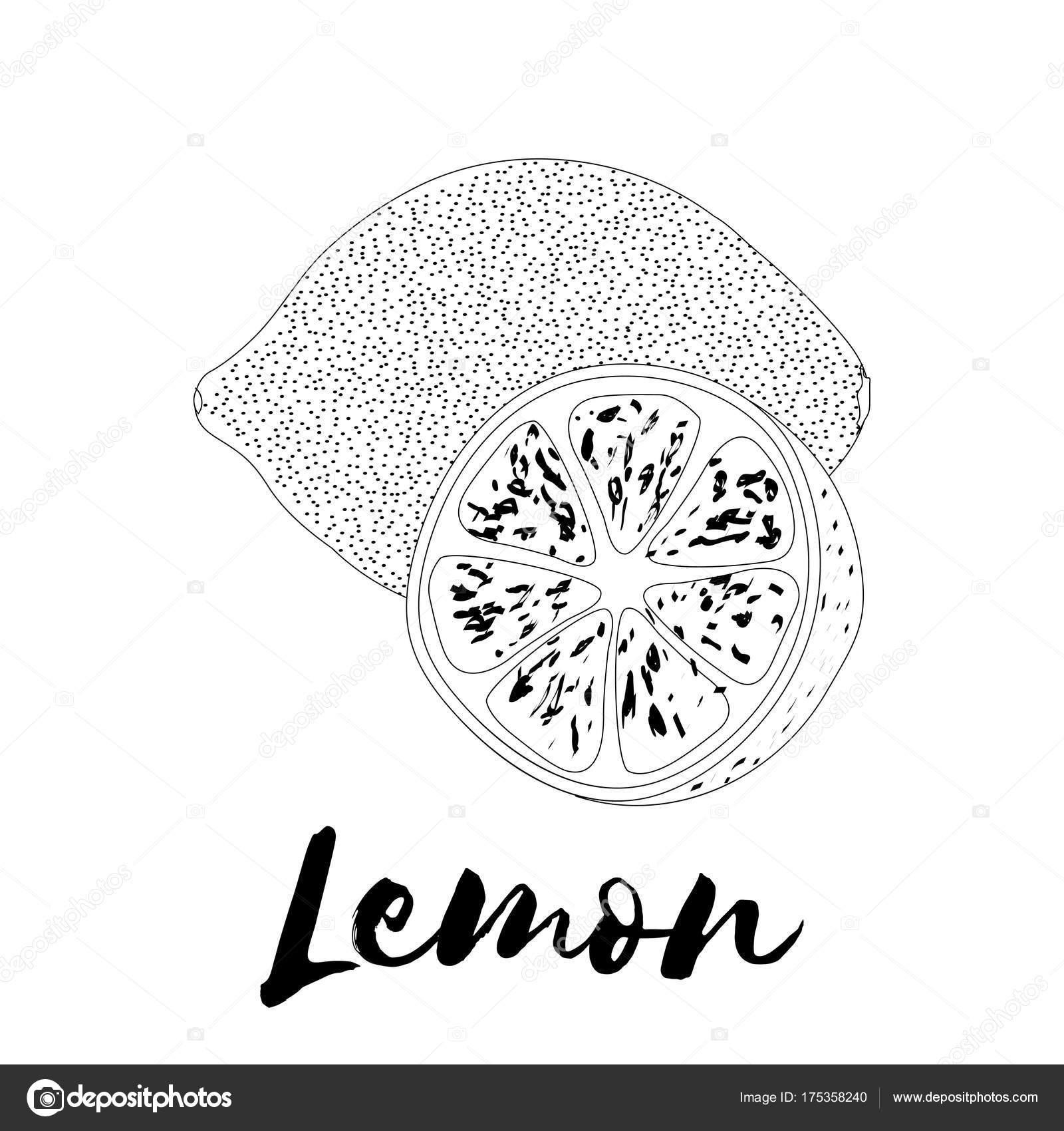 Limón. Página de libro para colorear. Diseño del Doodle. Frutas ...